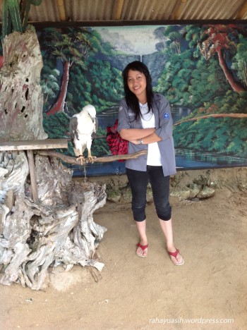 Elang (Turtle Island)