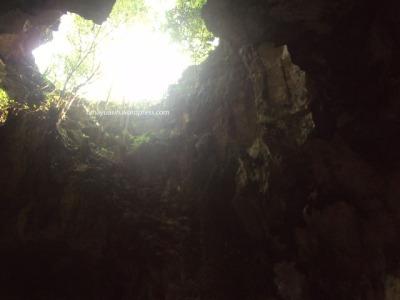 Sunhine into the deep