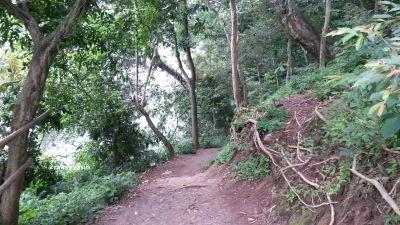 Jalan Tanjakan Goa Kreo